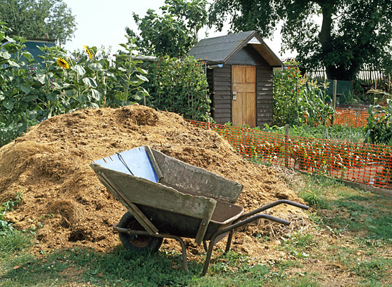compost heap  and barrow